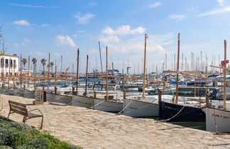 Voiliers dans le port de Pollença à Majorque