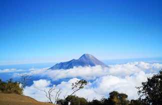 Somment du volcan Merbabu, Java, Indonésie