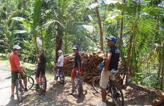 VTT à Ubud en Indonésie