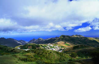 Canaries, Tenerife
