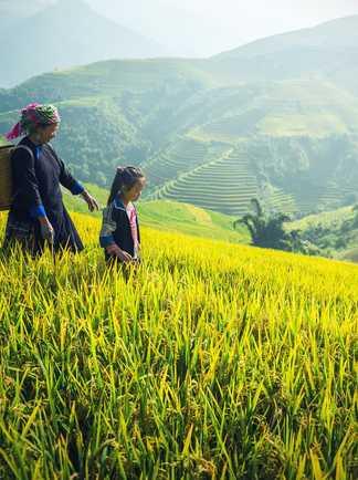 Birmane et sa fille dans un champs
