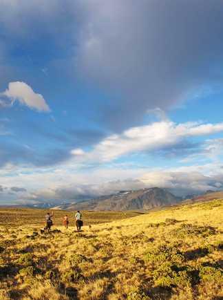 Cavaliers en Patagonie