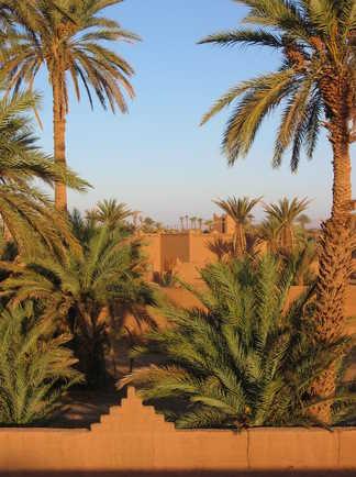 Kasbah Tazzarine, Maroc