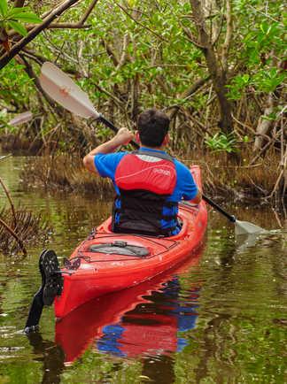 kayak dans la mangrove la salina