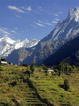 La vallée de la Modi khola, dominée par le Machhapuchhre