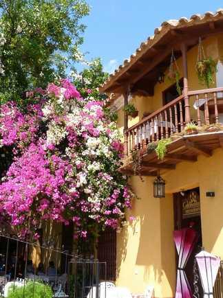 Maison fleurie de Trinidad