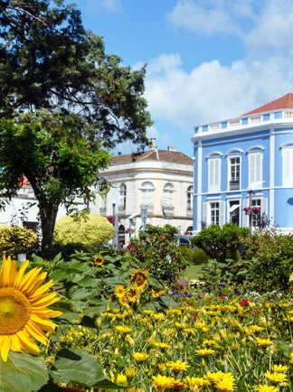 Maisons typiques à Ponta Delgada, île de San Miguel