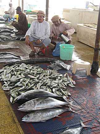 Marché aux poissons Mascate, Oman