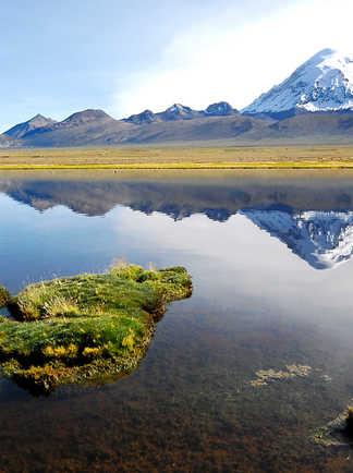 Parc National de Sajama, Oruro, Bolivie