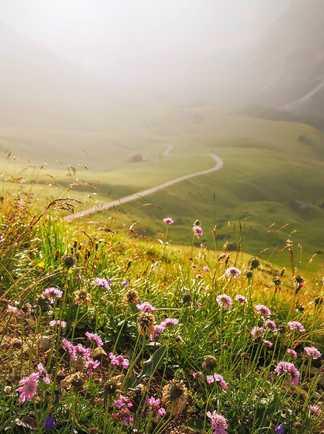 Paysage du Queyras lors d'une randonnée
