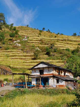 Paysages des Annapurnas