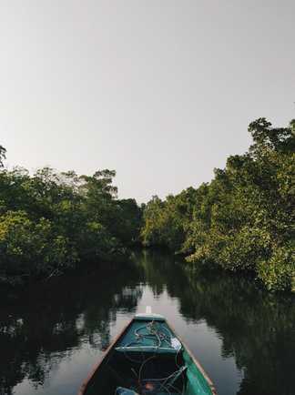 Pirogue sur le delta de Sine Saloum