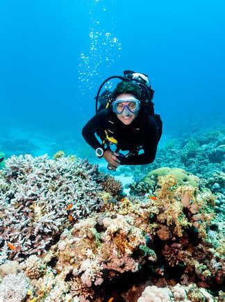 Pour les plongeurs aussi, c'est le bonheur en Mer Rouges !