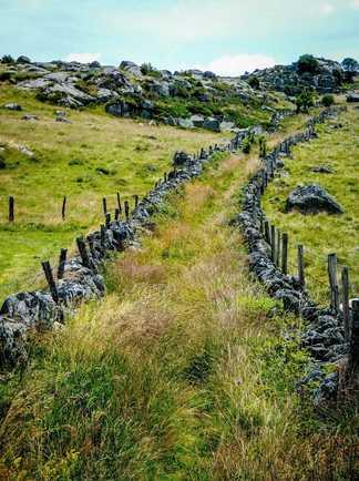 Randonnée du chemin de Compostelle dans la région de l'Aubrac
