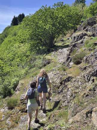 Randonnées dans la région de Conques, sur le chemin de Compostelle