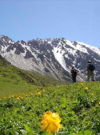 Randonneurs dans pâturages kirghiz