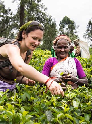 Rencontre dans les plantations de thé au Sri Lanka