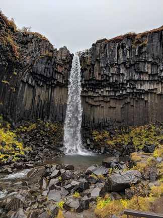 Svartifoss la cascade en orgue basaltique, Skaftafell dans le sud de l'Islande