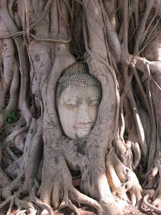Ayutthaya Thailande@ © Pixabay
