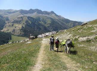 randonnée avec un âne dans le queyras