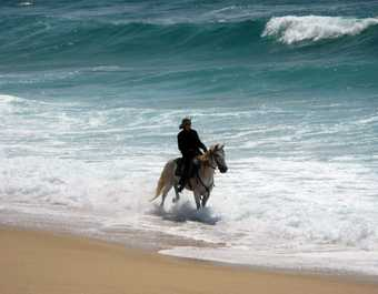 Cavalier marchant dans la mer, Alentejo