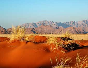 Dune rouge dans le désert du Namib