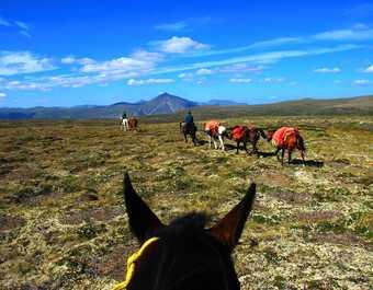 expédition avec cheval de bat dans le Yukon