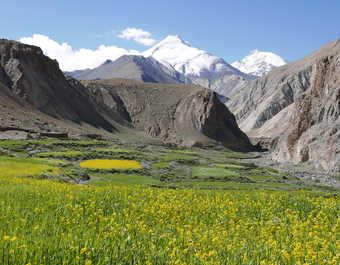 La vallée de la Markha, vue sur le Kang Yatse