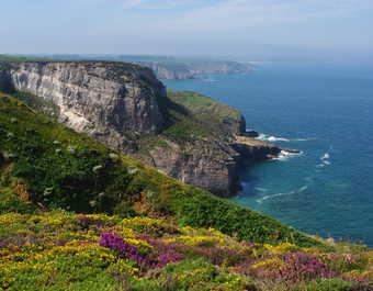 Paysage du Cap d'Erquy sur la côte d'Emeraude en Bretagne