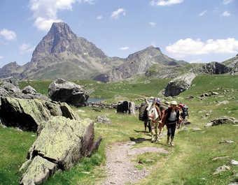 France, Pyrénées, montagne de Cerdagne
