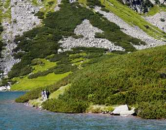 Randonneurs près d'un lac des Hautes Tatras