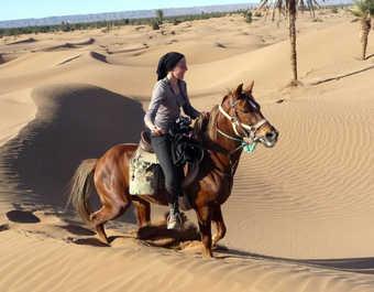 sahara marocain à cheval