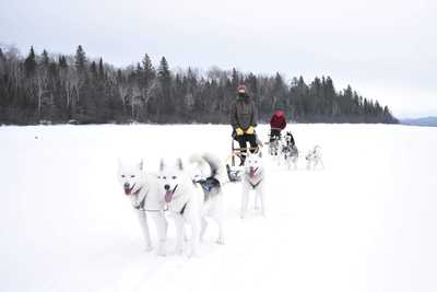 Marion Pinon en chien de traîneau au Québec