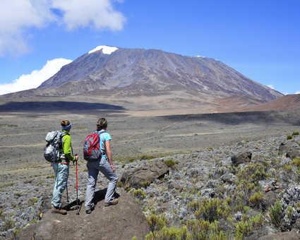 Vue du Circuit Nord sur le Kilimandjaro, massif du Kibo