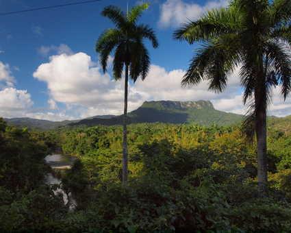 le Yunque