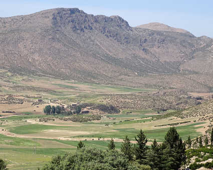 Plateau d'Ifrane, Moyen-Atlas, Maroc