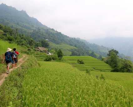 Randonnée dans les rizières de Ha Giang