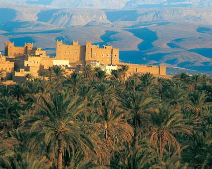 Palmeraie Tazzarine Maroc