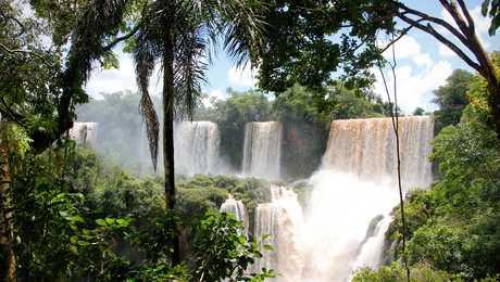 Chutes d'Iguazu à la frontière entre Brésil et Argentine