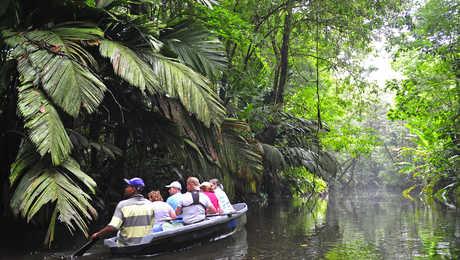 découverte en canoë du parc national Tortuguero