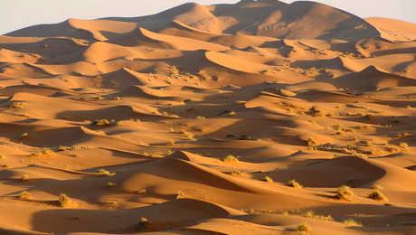 Dunes de Merzouga, erg Chebbi au Maroc