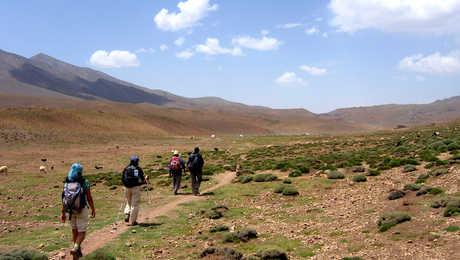 Plateau de Tarkeddit, au pied du M'Goun, Maroc