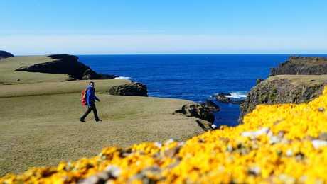 Shetlands rando