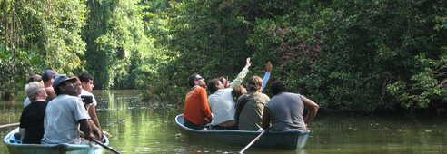 canoë dans le parc national Totuguero