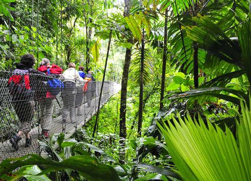 Photo d'un pont suspendu au Costa Rica