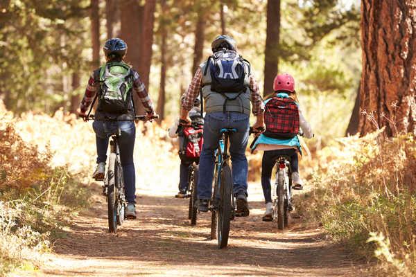 Famille à vélo, se baladant dans les bois une journée d'automne