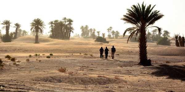 Marcheurs dans le désert de Nesrate, Maroc