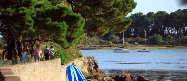 Randonnées sur la presqu'ile de Sene dans le Golfe du Morbihan
