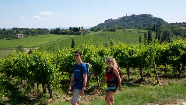 Randonneurs à travers les vignes de Toscane, Italie