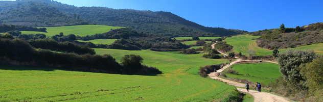 Trekkeurs sur le Camino de Santiago, Navarre